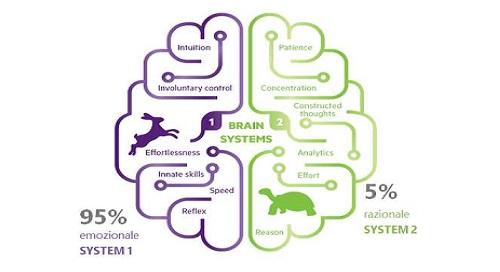 Il neuromarketing: cosa è e soprattutto cosa non è