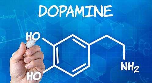 Dopamina Marketing: il vero ruolo della dopamina nelle decisioni di acquisto